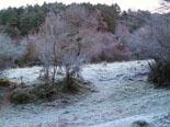 Paisatge i meteorologia de desembre al Ripollès Glaçades a l'entorn de Ripoll (23 de desembre). Foto: Antonina Coromina