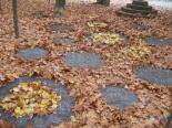 L'esclat de la tardor, en imatges Land art al passeig Ragull de Ripoll. Foto: Eudald Alabau