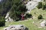 Ultratrail els Bastions de la Vall de Ribes Carles Rossell a punt d'arribar a Núria. Foto: Arnau Urgell