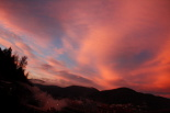 Paisatge i meteorologia desembre 2011 i gener 2012 Primera albada de l'hivern a Ripoll (23 de desembre). Foto: Arnau Urgell