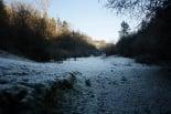 Paisatge i meteorologia desembre 2011 i gener 2012 Gran glaçada a Ripoll (15 de gener). Foto: Arnau Urgell