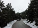 Neu, pluja i calamarsa 15-18 de maig Neu a la carretera del collet de les Barraques. (18 de maig). Foto: Daniel Julià