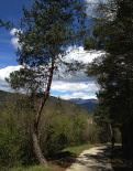 Nevada del 30 d'abril La serra de Montgrony nevada des de Ripoll. Foto: Arnau Urgell