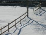 L'endemà de la gran nevada La Barricona de Ripoll ben blanca. Foto: Patrícia Oliva