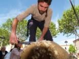 El 2009 al Ripollès, en 100 imatges Festa nacional de la Llana (Ripoll, 17 de maig) Foto: Arnau Urgell