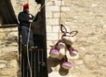 El 2009 al Ripollès, en 100 imatges L'ase penjat per Festa Major (Vilallonga de Ter, 8 de novembre) Foto: Xevi Mas