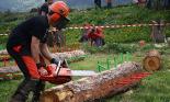 L'any 2010 en 100 imatges Festa del Pi de Matamala. Foto: Arnau Urgell