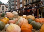 L'any 2010 en 100 imatges Carbasses de fins a 290 kg a la primera Fira de la Carbassa de Sant Joan. Foto: Xevi Mas