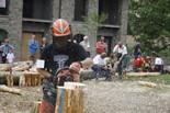 XVI Concurs de Tallada de Troncs de Vallfogona