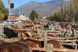 Fira del Cavall de Puigcerdà