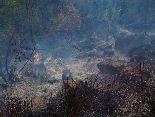 Incendi a un bosc de Sant Ferriol