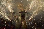 Diada de Drac Baluk Astharot i Diables de Ca n'Aurell de Terrassa