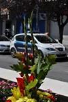 Ofrena Floral a Terrassa 2014