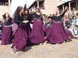 Fira de les Bruixes de Sant Feliu Sasserra (1)