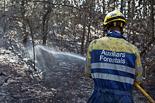 L'endemà de l'incendi a Sant Feliu Sasserra