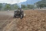 Campionat de Llaurada de tractors d'època de Sant Vicenç