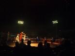 El Circ Raluy a Manresa