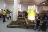 Fira Ecoviure 2013