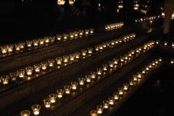 Encesa de la Nova Llum i Jardins de llum 2016