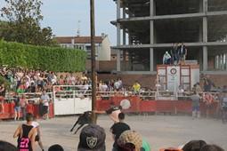 Festa Major de Santpedor, 2016