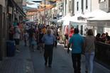 Fira del Vapor de Sant Vicenç de Castellet 2015