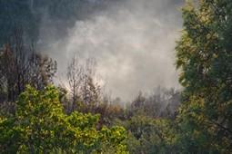 Incendi de Marganell, juny de 2016