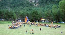 Pi de les Tres Branques 2014 La gran V gegant de més de 1.000 persones que va organitzar l'ANC al costat del Pi