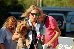 Primer concurs de bellesa canina del Berguedà