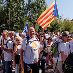 Diada Nacional 2016: manifestació Berga (II)