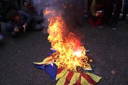 Les fotografies del 9-N Membres de l'ultra dreta cremen una estelada davant la delegació del Govern. Foto: Jordi Borràs