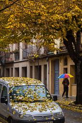 Els colors de la tardor Foto: Adrià Costa
