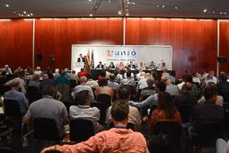 Consell Nacional d'Unió Democràtica