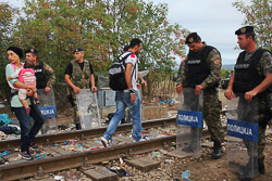 El drama dels refugiats sirians, a la frontera de Macedònia Els policies macedonis deixen passar la frontera de deu en deu. (24 d'agost). Foto: Sergi Cámara