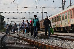 El drama dels refugiats sirians, a la frontera de Macedònia Grups de sirians arribant a la frontera Els policies macedonis deixen passar la frontera de deu en deu. (24 d'agost). Foto: Sergi Cámara