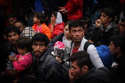 Refugiats sirians a la frontera Sèrbia-Croàcia Famílies refugiades esperen poder entrar a l'estació de tren del poble croat de Tovarnik. Foto: Sergi Cámara