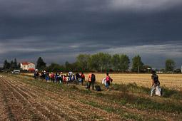 Refugiats sirians a la frontera Sèrbia-Croàcia Un grup de refugiats es dirigeix cap a l' estació de tren de Tovarnik a Croàcia. Foto: Sergi Cámara
