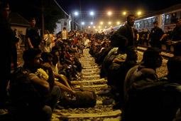 Refugiats sirians a la frontera Sèrbia-Croàcia Milers de persones esperen per poder pujar al tren que els portarà cap a la frontera d'Hongria a l'estació del poble croat de Tovarnik el 19 de setembre. Foto: Sergi Cámara