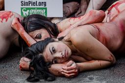«Performance» animalista contra la industria pelletera
