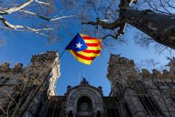 Les millors fotos de la setmana de Nació Digital <a href='http://www.naciodigital.cat/galeria/2712/pagina1/francesc/homs/declara/al/tsjc/9-n'>Una estelada oneja davant el Palau de la Justícia durant la declaració de Francesc Homs pel 9N.</a>. </br> Foto: Adrià Costa