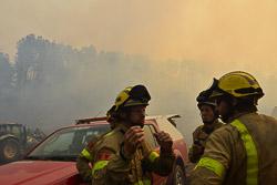Incendi de Sant Feliu Sasserra