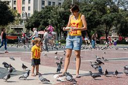 Diada Nacional 2014 a Barcelona: ambient matí (1)