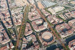 La Via Catalana 2014 des de l'aire