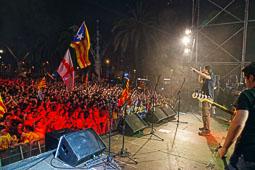 Diada Nacional 2014 a Barcelona: Festa per la Llibertat