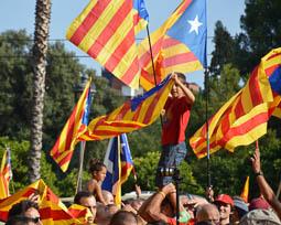 Via Catalana 2014 a la zona universitària