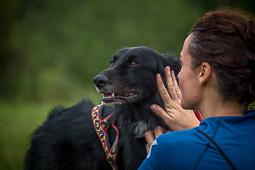 Canicròs i trekking caní del Collsacabra