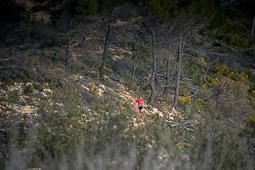 Cursa dels Biberons a Pinell de Brai