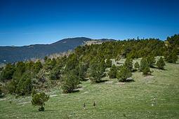La Molló Trail - Camí de la Retirada