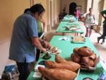 Diada de Territori de Masies 2015