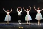 Festival de Dansa de Solsona