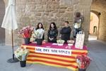 Sant Jordi 2016 a Solsona